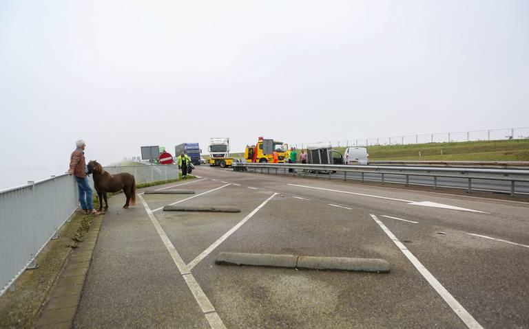 Lange file op Afsluitdijk richting Friesland door ongeval met paardentrailer.